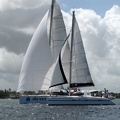 tour-voile-guadeloupe29